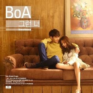 BoA_Disturbance