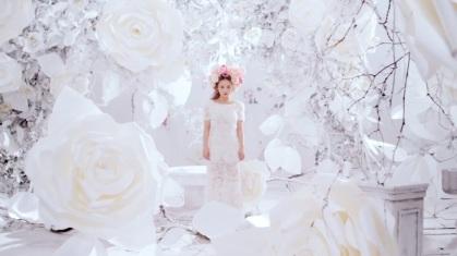 White Roses Set...